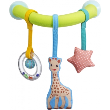 Image Sophie the Giraffe car arch